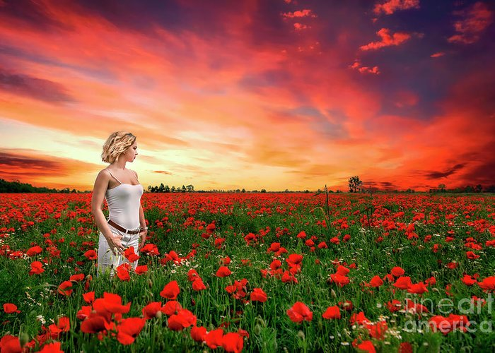 Kremsdorf Greeting Card featuring the photograph Rhapsody In Red by Evelina Kremsdorf