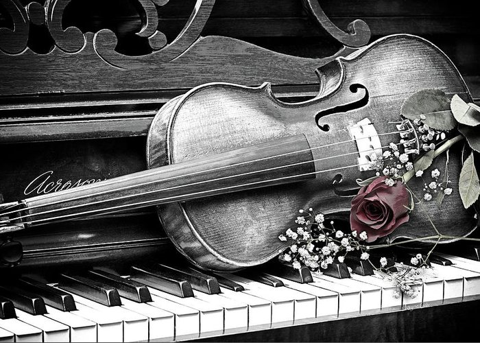 Violin Greeting Card featuring the photograph Rhapsody by Jayne Gohr