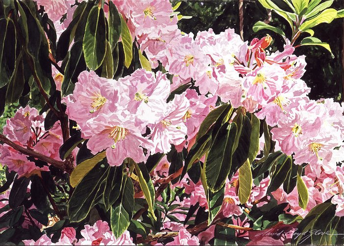 Flowers Greeting Card featuring the painting Rhodo Grove by David Lloyd Glover
