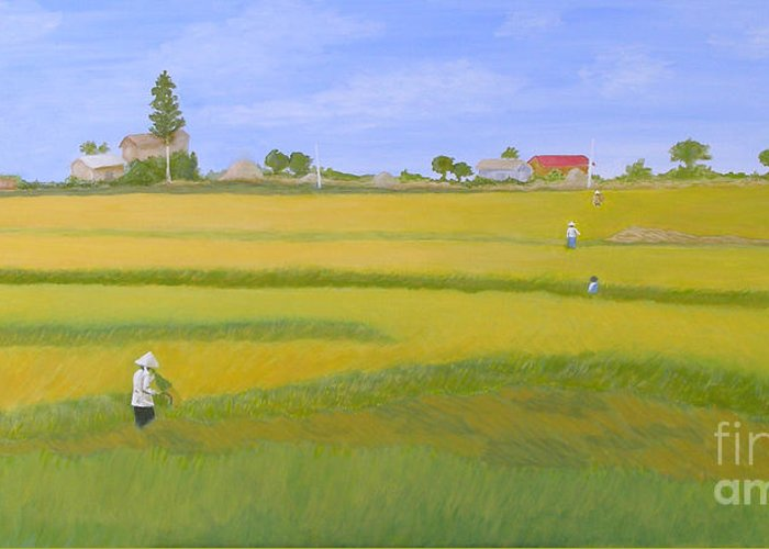 Scenic Greeting Card featuring the painting Rice Field In Northern Vietnam by Thi Nguyen
