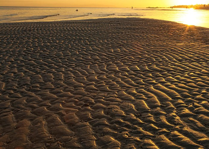 Palm Greeting Card featuring the photograph Ripples In The Sand Low Tide Golden Sunset by James BO Insogna
