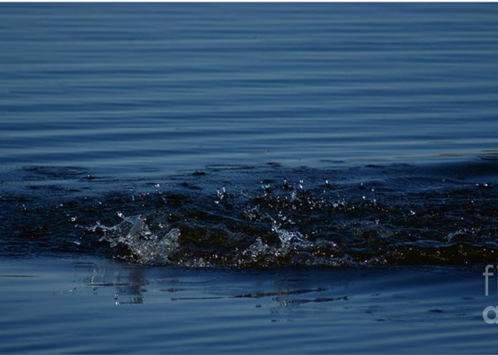 Waves Ripples In Lake Greeting Card featuring the photograph Ripples by Joanne Smoley