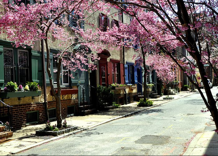 Rittenhouse Square Greeting Card featuring the photograph Rittenhouse Square Neighborhood by Andrew Dinh