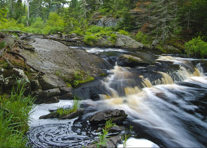 Tidal Greeting Card featuring the photograph River Flow V by Sean Holmquist