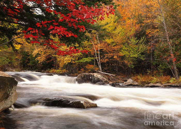 River Greeting Card featuring the photograph River Rapids Fall Nature Scenery by Oleksiy Maksymenko