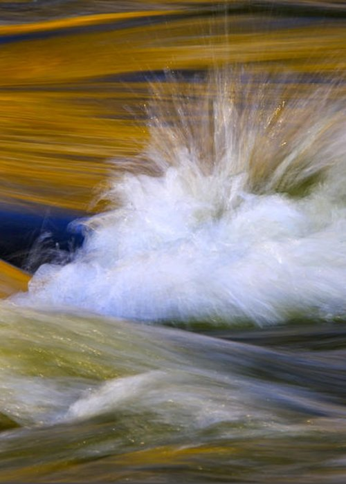 River Greeting Card featuring the photograph River by Silke Magino