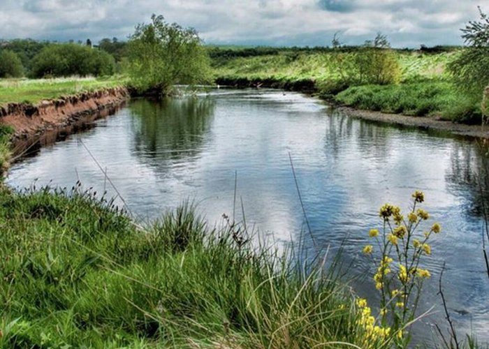 Nature_perfection Greeting Card featuring the photograph River Tame, Rspb Middleton, North by John Edwards
