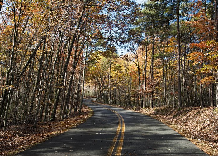 Autumn Greeting Card featuring the photograph Road To Autumn by Dennis Ludlow