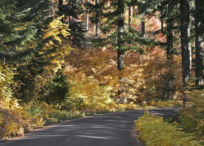Road To Autumn Greeting Card featuring the photograph Road To Autumn by Wes and Dotty Weber