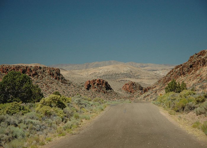 Scenic Greeting Card featuring the photograph Roadway To Peace by Lori Mellen-Pagliaro