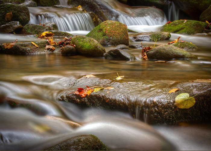 Roaring Greeting Card featuring the photograph Roaring Fork Stream Great Smoky Mountains by Steve Gadomski