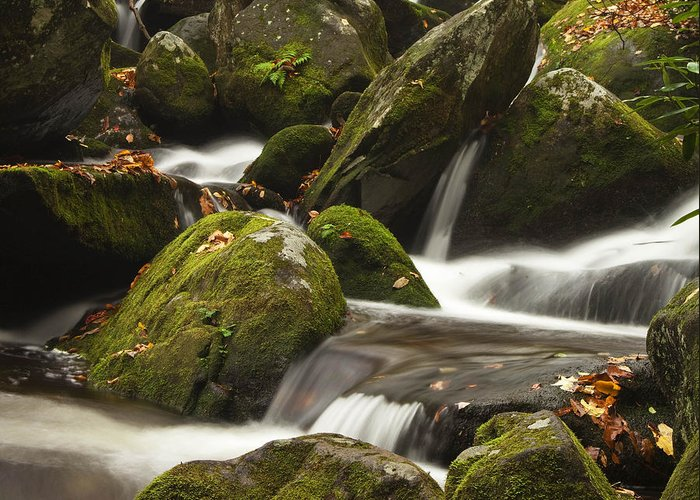 Smokies Greeting Card featuring the photograph Roaring Fork Waterfall by Andrew Soundarajan