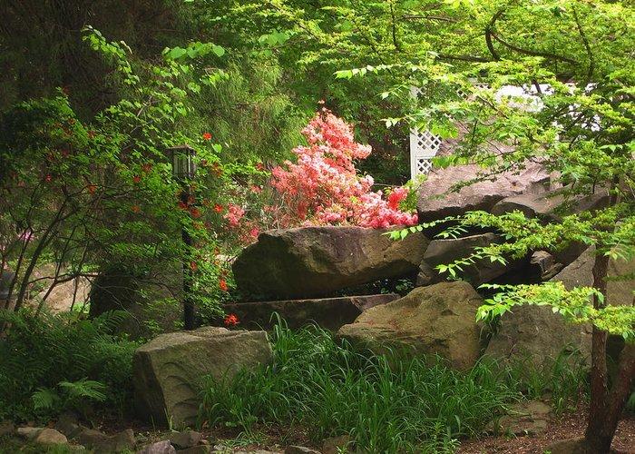 Rocks Greeting Card featuring the photograph Rock Garden by Lea Novak