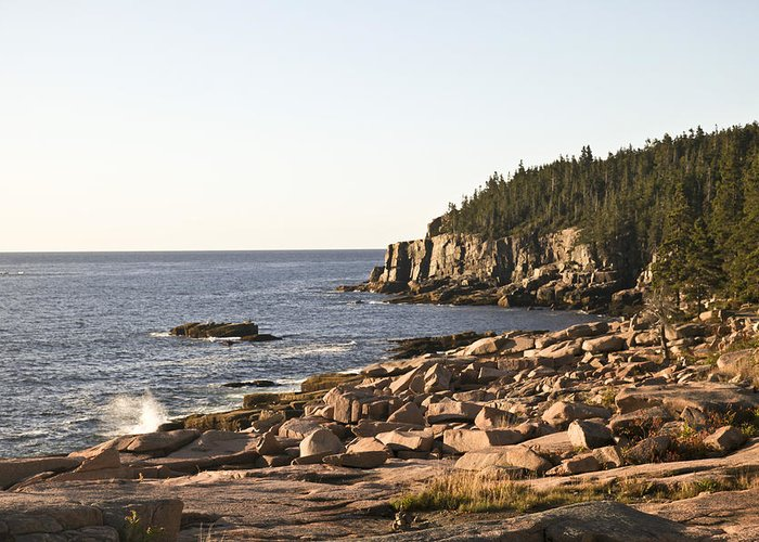 Acadia Greeting Card featuring the photograph Rocky Coast Of Acadia by Frank Russell