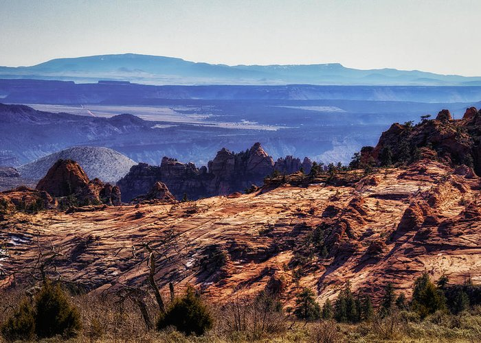 National Park Greeting Card featuring the photograph Rocky View by Mitch Johanson