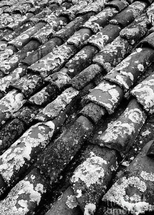 Ceramics Greeting Card featuring the photograph Roof Tiles by Gaspar Avila