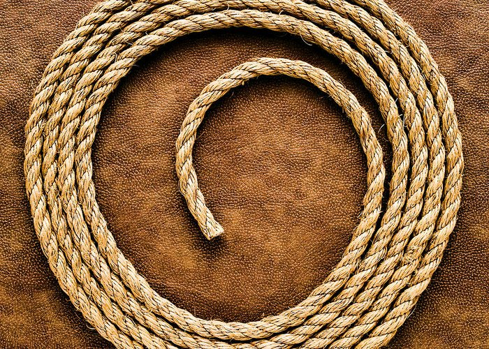 American Greeting Card featuring the photograph Rope On Leather by Olivier Le Queinec
