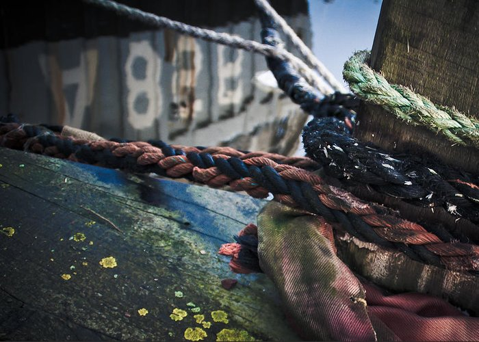 Harbour Greeting Card featuring the photograph Ropes by Davina Scheper