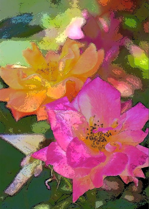 Floral Greeting Card featuring the photograph Rose 114 by Pamela Cooper
