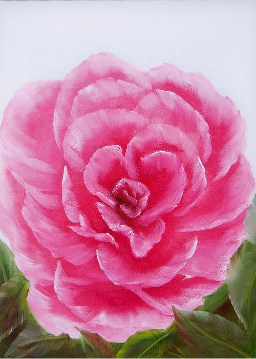 Oil Greeting Card featuring the painting Rose by Joni McPherson