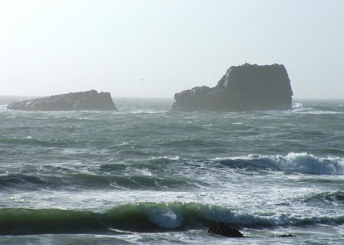 Oceanes Greeting Card featuring the photograph Rough Waters by Shari Chavira