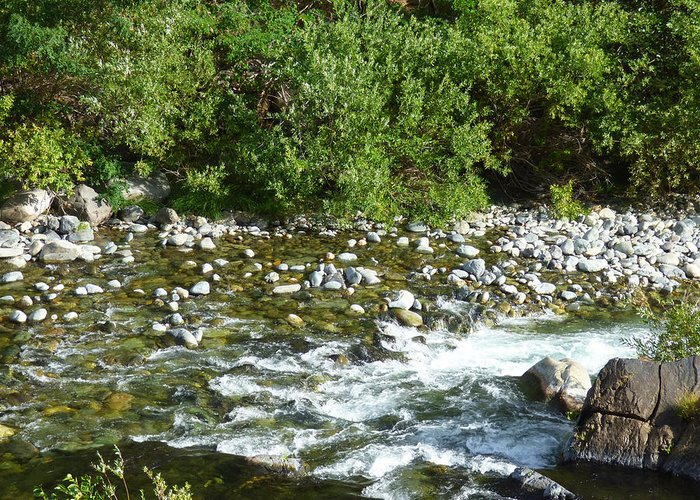 River Greeting Card featuring the photograph Rounded Rocks In A Rushing River by Andrea Freeman