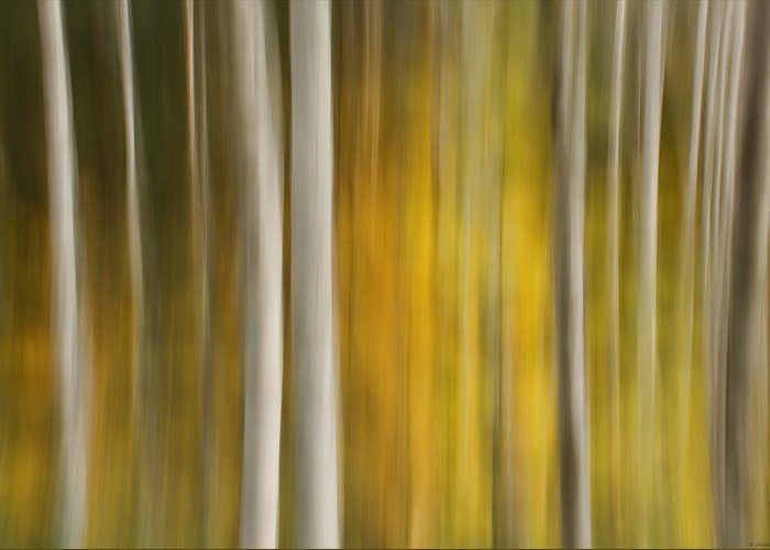Abstract Greeting Card featuring the photograph Route 542b by Julius Reque