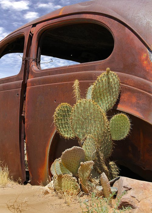 Southwest Greeting Card featuring the photograph Route 66 Cactus by Mike McGlothlen