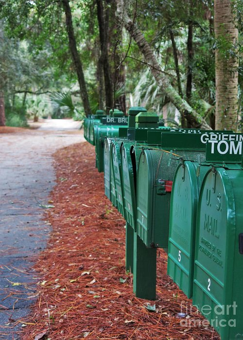 Green Greeting Card featuring the photograph Row Of Green Mailboxes7426 by T Powell