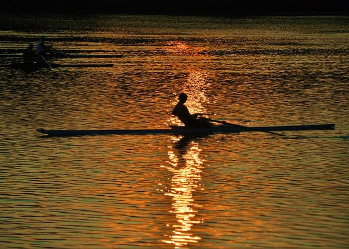 Philadelphia Greeting Card featuring the photograph Rowing At Sunset 3 by Bill Cannon