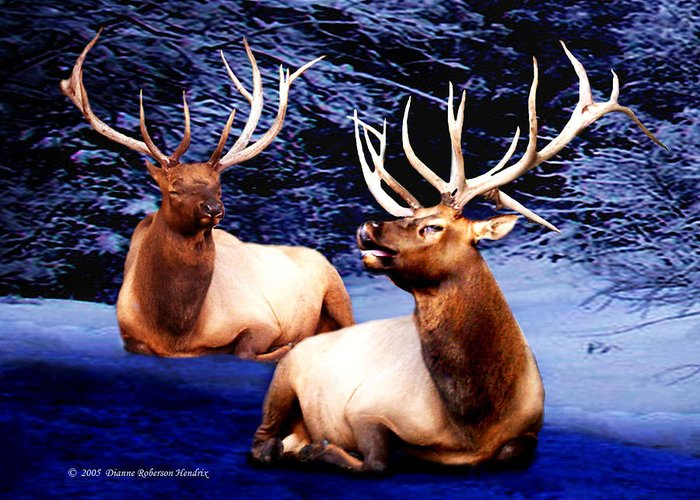 Alaska Greeting Card featuring the photograph Royal Elk by Dianne Roberson