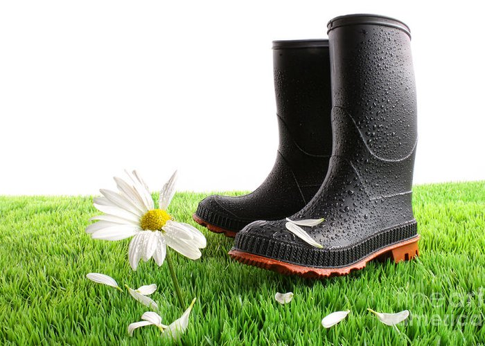 Abstract Greeting Card featuring the photograph Rubber Boots With Daisy In Grass by Sandra Cunningham