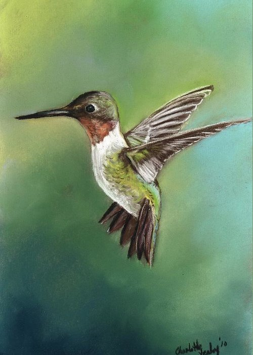 Bird Greeting Card featuring the painting Ruby Throated Hummingbird by Charlotte Yealey
