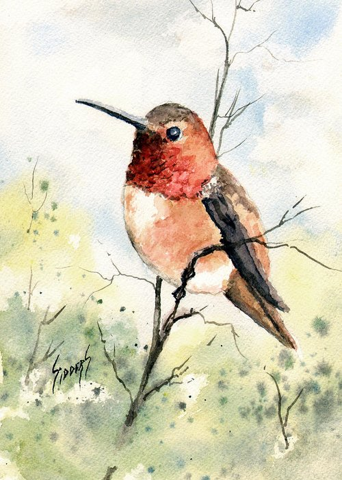 Wing Greeting Card featuring the painting Rufous Hummingbird by Sam Sidders
