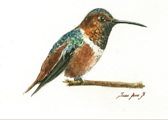 Rufous Greeting Cards