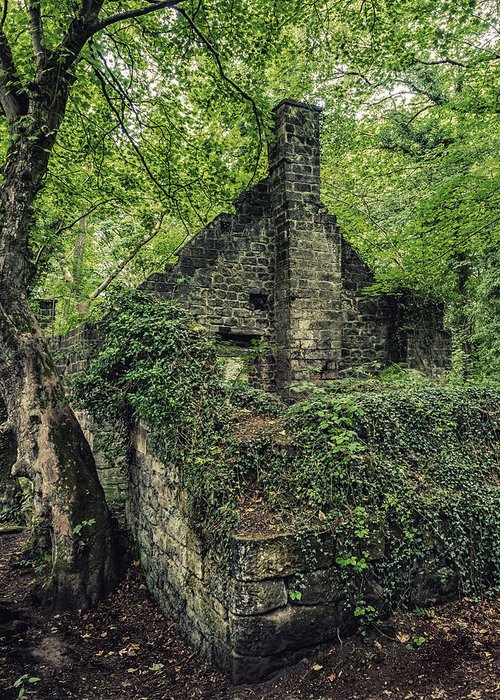 Landscapes Greeting Card featuring the photograph Run Down Mill by Nick Bywater