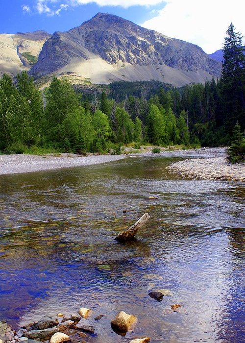 Stream Glacier National Park Greeting Card featuring the photograph Running Eagle Creek Glacier National Park by Marty Koch