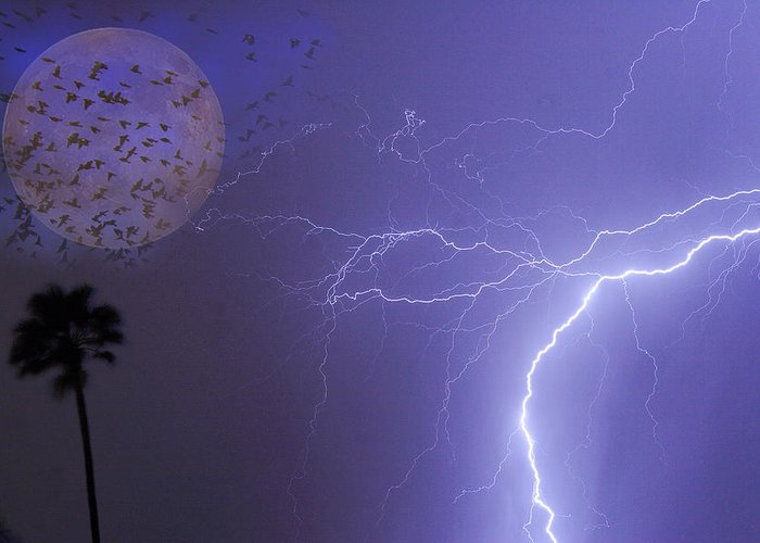 Lightning Greeting Card featuring the photograph Running From The Storm by James BO Insogna