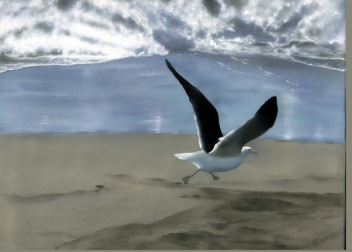 Gull Greeting Card featuring the painting Running Gull by Charles Parks