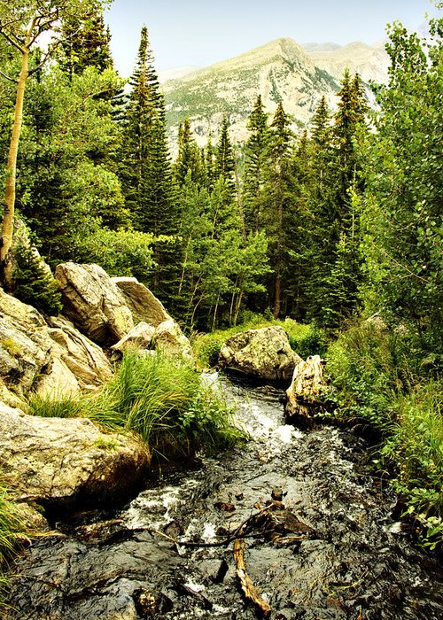 Colorado Greeting Card featuring the photograph Running River by Marilyn Hunt