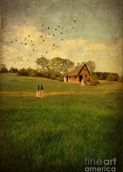House Greeting Card featuring the photograph Rural Cottage by Jill Battaglia