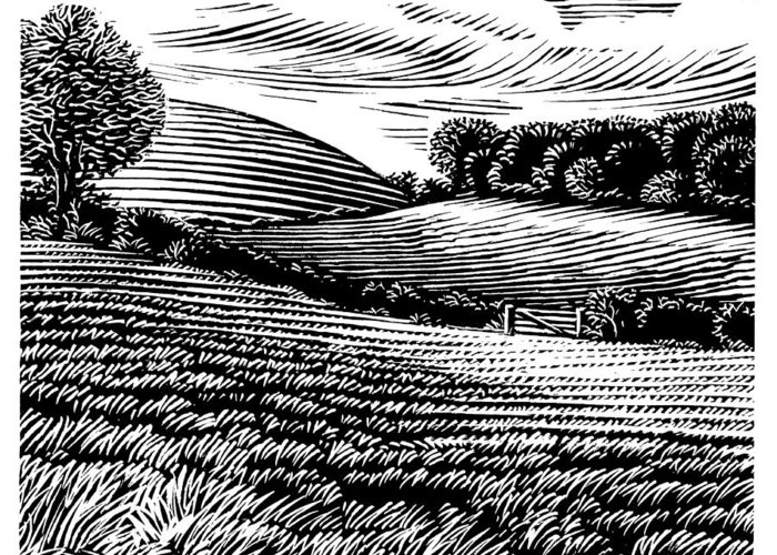 Landscape Greeting Card featuring the photograph Rural Landscape, Woodcut by Gary Hincks
