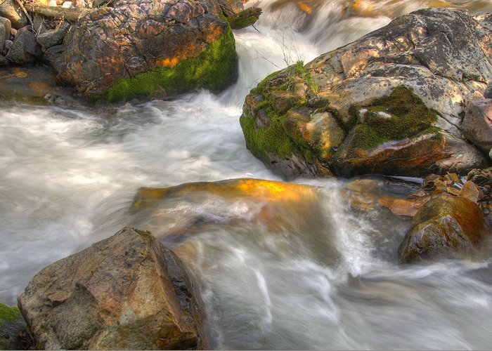 River; Stream; Creek; Rivulet; Brook; Water; Fall; Falls; Waterfall; Watercourse; Cascade; Torrent; Greeting Card featuring the photograph Rushing Water 1 by Douglas Pulsipher