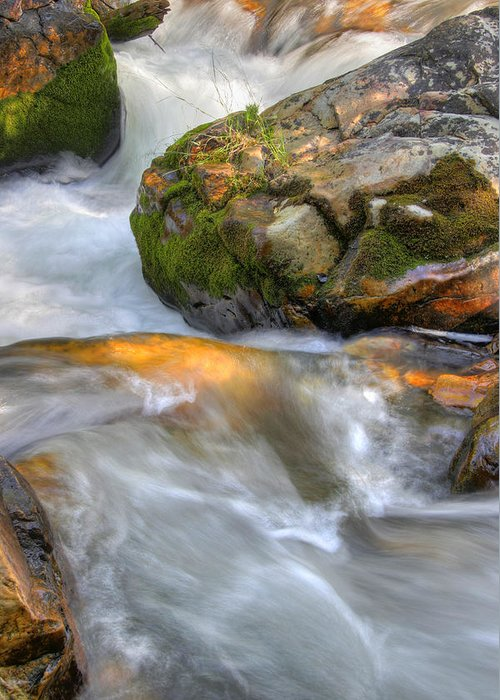 River; Stream; Creek; Rivulet; Brook; Water; Fall; Falls; Waterfall; Watercourse; Cascade; Torrent; Greeting Card featuring the photograph Rushing Water 2 by Douglas Pulsipher