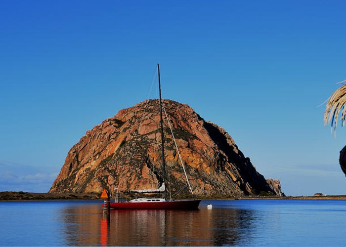 Boats In Morro Bay Greeting Cards