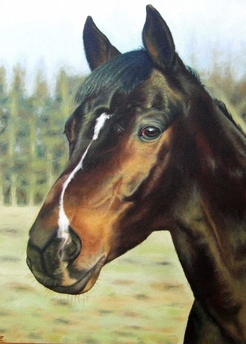 Horse Greeting Card featuring the painting Russian Horse by Nicole Zeug