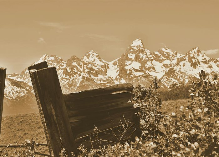 Rustic View Of Grand Teton Greeting Card featuring the photograph Rustic View Of Grand Teton by Dan Sproul