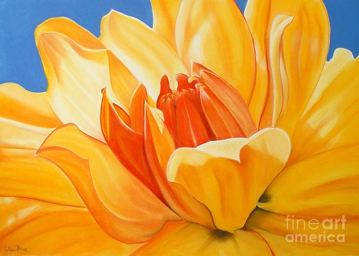 Floral Greeting Card featuring the painting Saffron Splendour by Colleen Brown