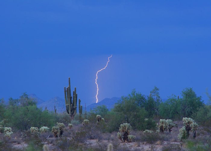 Lightning Greeting Card featuring the photograph Saguaro Desert Lightning Strike Fine Art by James BO Insogna