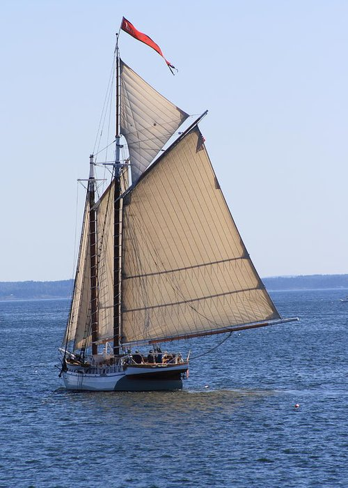 Seascape Greeting Card featuring the photograph Sail Away by Doug Mills